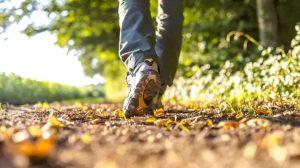 المشي .. أحد التمارين الرياضية الأهم لإنقاص الوزن